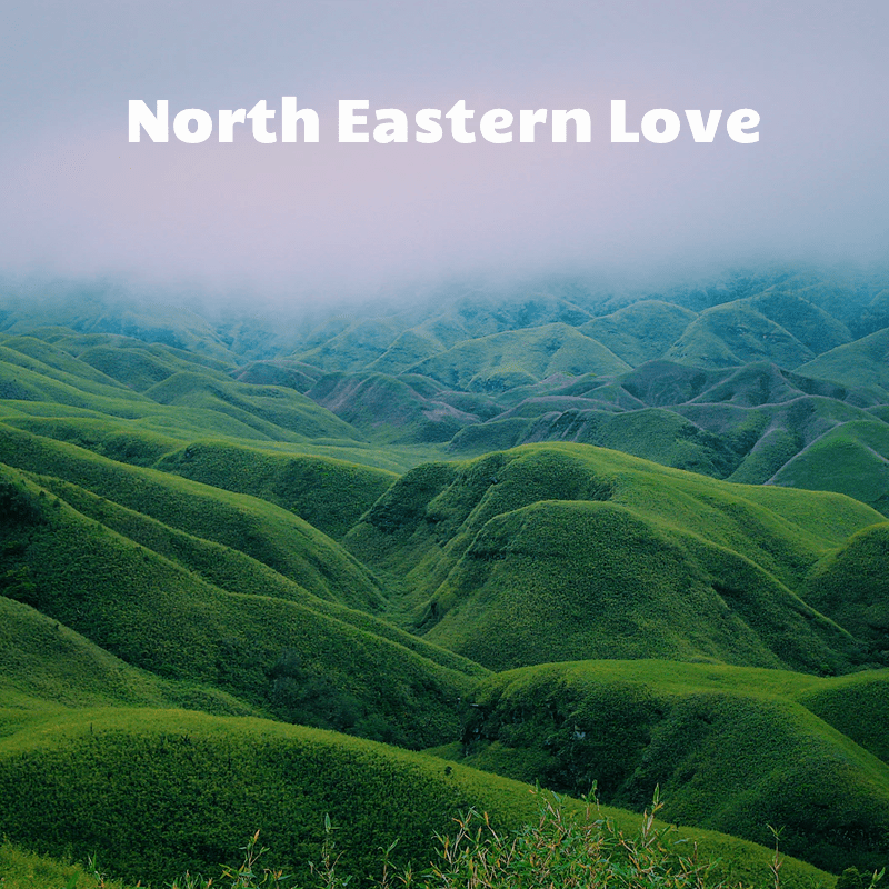 North eastern love